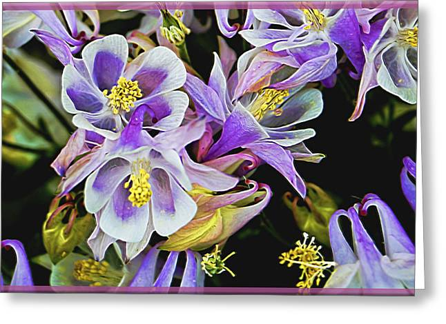 Flower Design Greeting Cards - Artistic Lavender Honeysuckles Greeting Card by William Sturgell