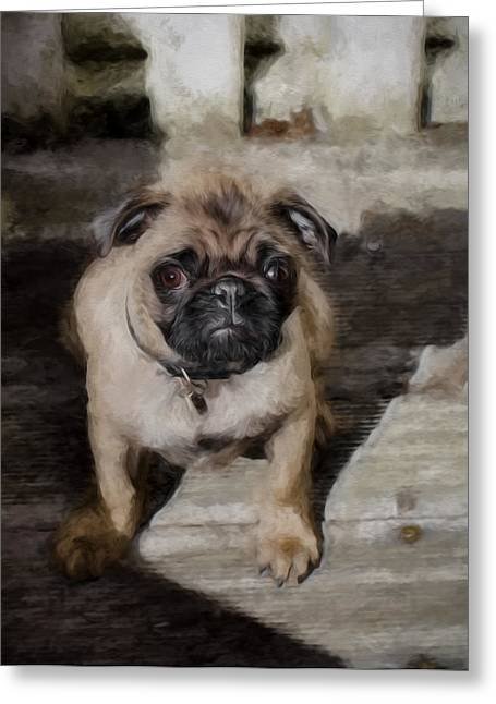 Puppy Digital Art Greeting Cards - Artistic painterly Pug Greeting Card by Leif Sohlman