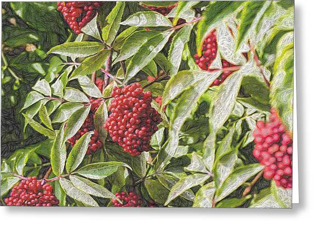 Berry Greeting Cards - Artistic Red Greeting Card by Leif Sohlman