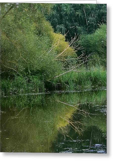 Reflections In River Greeting Cards - Artistic Reflection September 2015 Greeting Card by Leif Sohlman