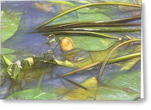 Water Lilly Greeting Cards - Artistic Yellow waterlilly 2015 Greeting Card by Leif Sohlman