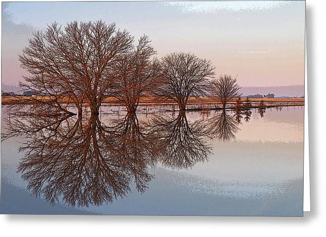 Reflection Of Trees Greeting Cards - Artistic Fancy Greeting Card by Tom Druin
