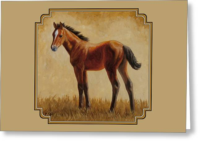 Bay Horse Greeting Cards - Afternoon Glow Greeting Card by Crista Forest