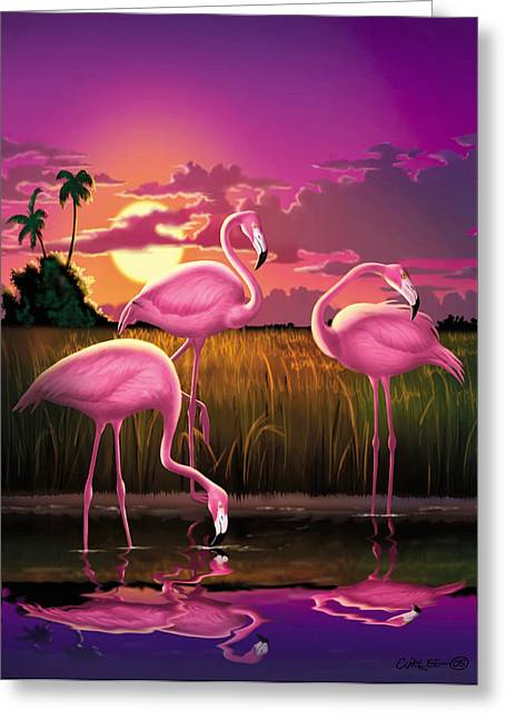Flamingoes Flamingos Tropical Sunset Landscape Florida Everglades Large Hot Pink Purple Print Greeting Card by Walt Curlee