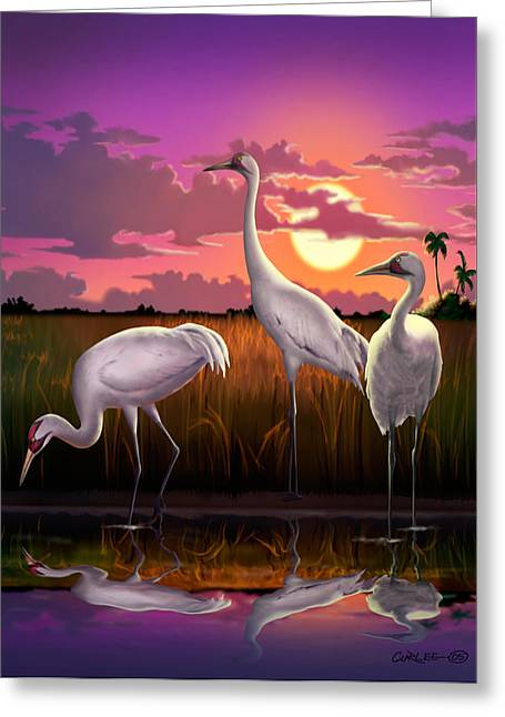 Ocean Panorama Greeting Cards - Whooping Cranes Tropical Florida Everglades Sunset birds landscape scene purple pink print Greeting Card by Walt Curlee