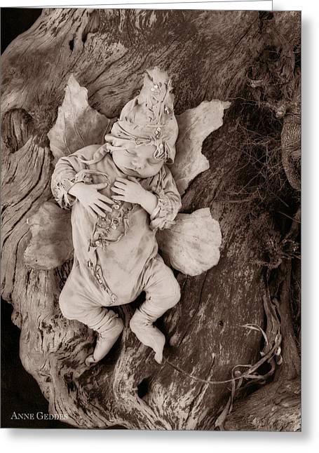 Driftwood Fairy Greeting Card by Anne Geddes