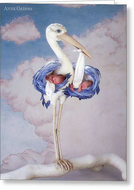 Mother Stork Greeting Card by Anne Geddes