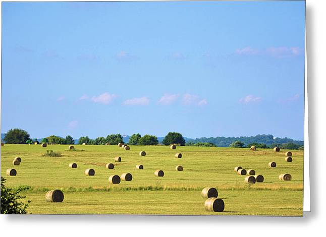 Tennessee Hay Bales Greeting Cards - As Far As You Can See Greeting Card by Jan Amiss Photography