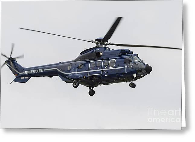 Military Police Greeting Cards - As332 Super Puma Helicopter Greeting Card by Timm Ziegenthaler
