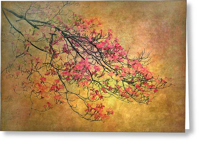 Pink Flower Branch Digital Art Greeting Cards - Asian Dogwood Greeting Card by Jessica Jenney