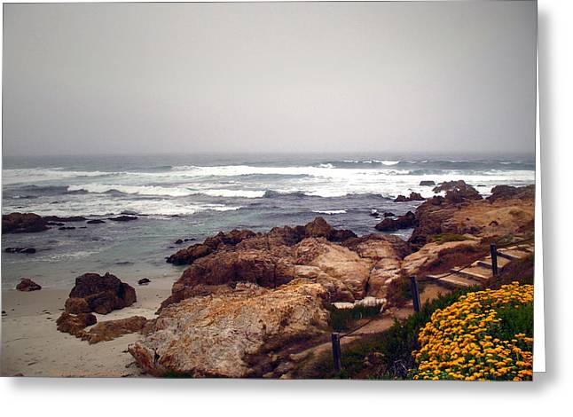 Best Sellers -  - Foggy Beach Greeting Cards - Asilomar Beach Pacific Grove CA USA Greeting Card by Joyce Dickens
