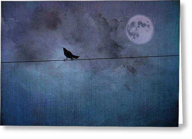 Bird On A Wire Greeting Cards - Ask Me For The Moon Greeting Card by Jan Amiss Photography