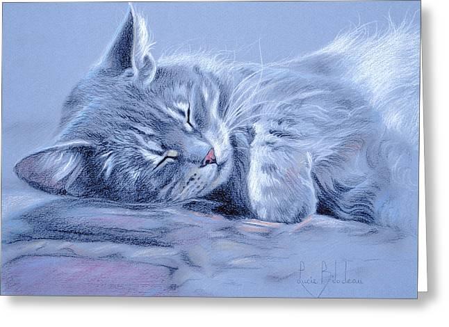 Asleep Greeting Card by Lucie Bilodeau