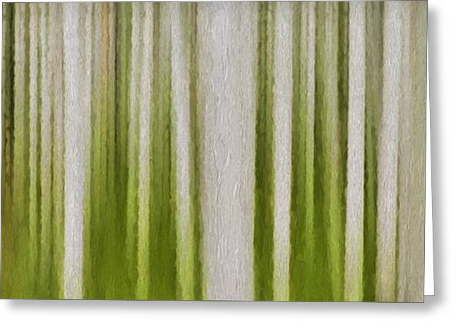 Best Seller Greeting Cards - Aspen Forest Greeting Card by Ken Smith