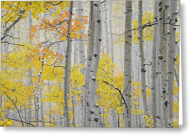 Aspen Forest Texture Greeting Card by Leland D Howard
