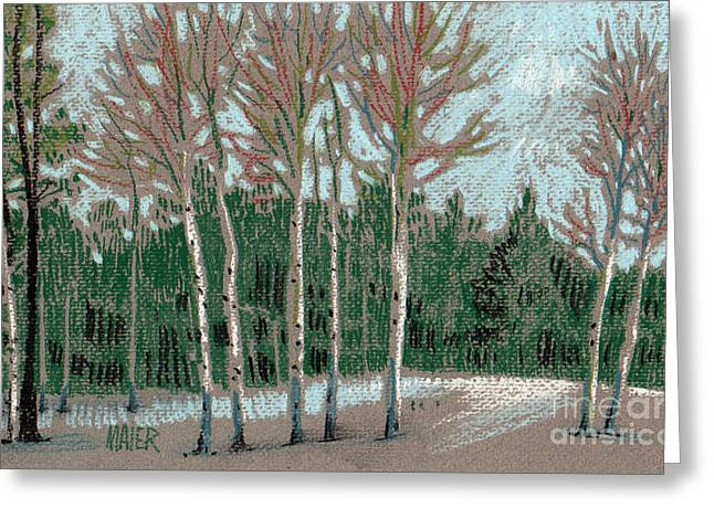 Snowed Trees Pastels Greeting Cards - Aspen in the Snow Greeting Card by Donald Maier
