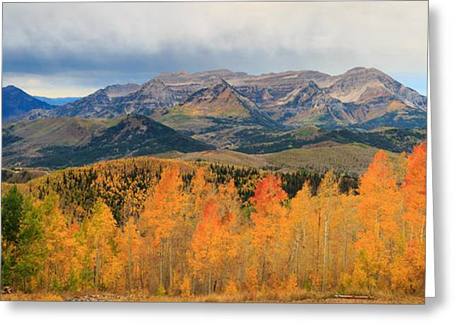 Mountain Valley Greeting Cards - Aspen Medley Greeting Card by Johnny Adolphson
