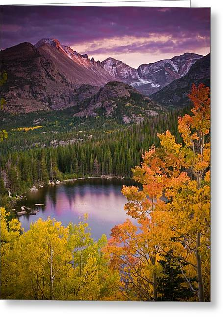 Rocky Mountains Greeting Cards - Aspen Sunset Over Bear Lake Greeting Card by Mike Berenson