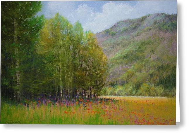 Mountain Valley Pastels Greeting Cards - Aspen Valley Greeting Card by Paula Ann Ford