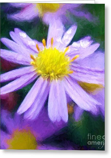 Aster Digital Art Greeting Cards - Aster Greeting Card by Jim  Hatch
