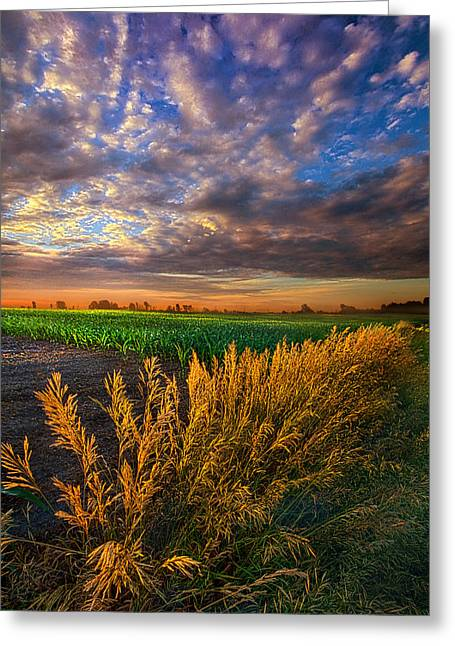 Country Life Greeting Cards - At First Blush Greeting Card by Phil Koch