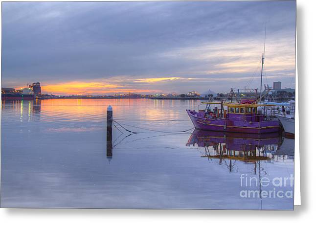 Stockton Greeting Cards - At Rest Greeting Card by David Watson