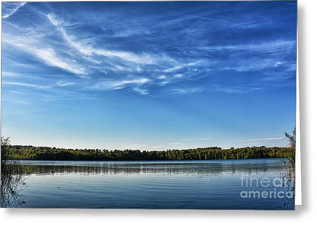 Trees In Autumn Greeting Cards - At sea Greeting Card by SK Pfphotography