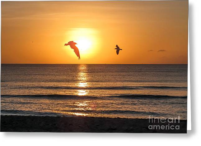 Fineartamerica Greeting Cards - At sunrise Greeting Card by Zina Stromberg