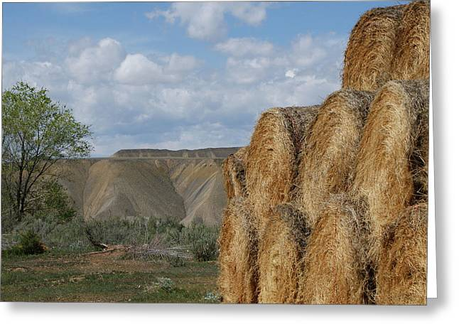 Hay Bales Greeting Cards - At The End of Nowhere Road Greeting Card by Ernie Echols