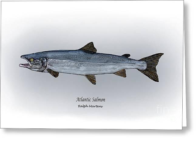 Atlantic Salmon Greeting Card by Ralph Martens