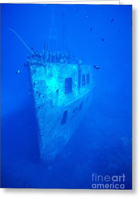 Atlantis Greeting Cards - Atlantis Wreck Greeting Card by Bob Abraham - Printscapes