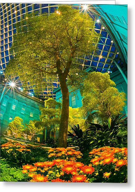 Twinkle Greeting Cards - Atrium of Art Greeting Card by Steven Maxx