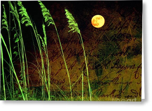 Moon Beach Greeting Cards - Au Claire de La Lune Greeting Card by Susanne Van Hulst
