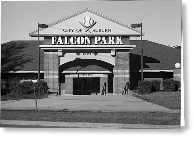 Auburn, Ny - Falcon Park Bw Greeting Card by Frank Romeo
