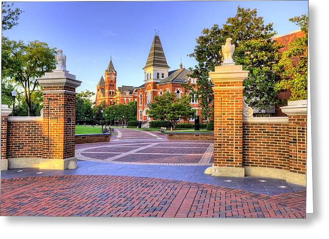 Toomers Corner Greeting Cards - Auburn University Mornings Greeting Card by JC Findley