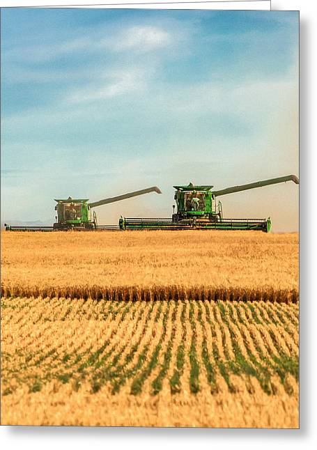 Augers Out Greeting Card by Todd Klassy