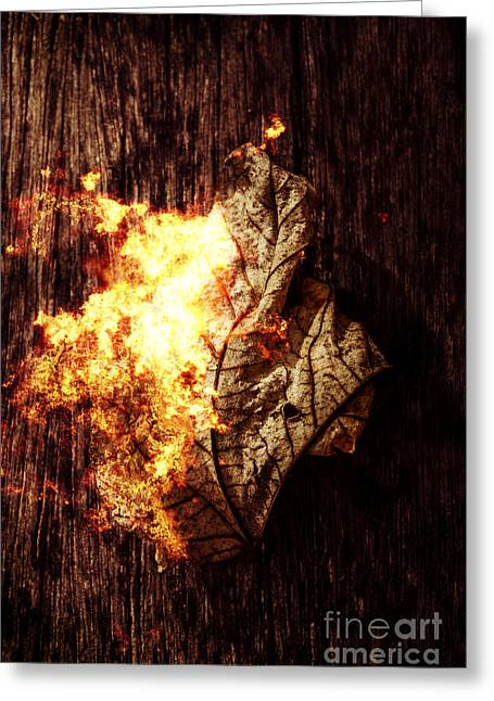 August Burns Red Greeting Card by Jorgo Photography - Wall Art Gallery