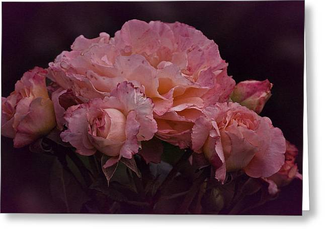 Enhanced Greeting Cards - August Roses No. 2 Greeting Card by Richard Cummings