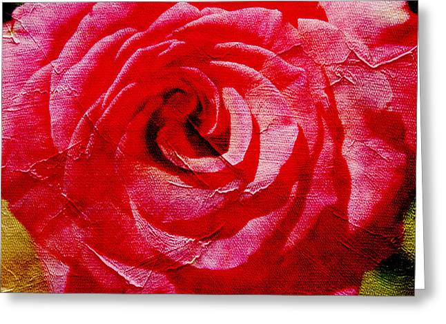 Floral Digital Photographs Greeting Cards - Aunt Loris Roses Greeting Card by Danielle Miller