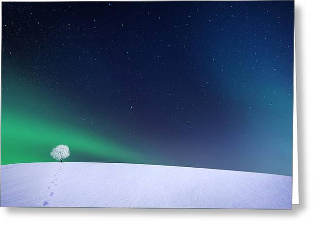 Aurora Greeting Card by Bess Hamiti