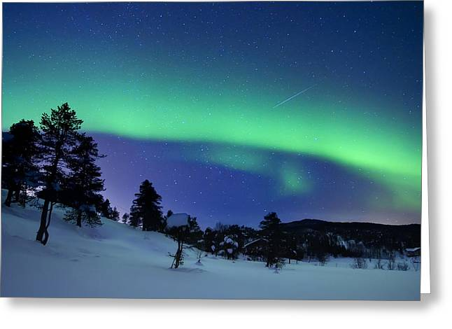 Natural Phenomenon Greeting Cards - Aurora Borealis And A Shooting Star Greeting Card by Arild Heitmann