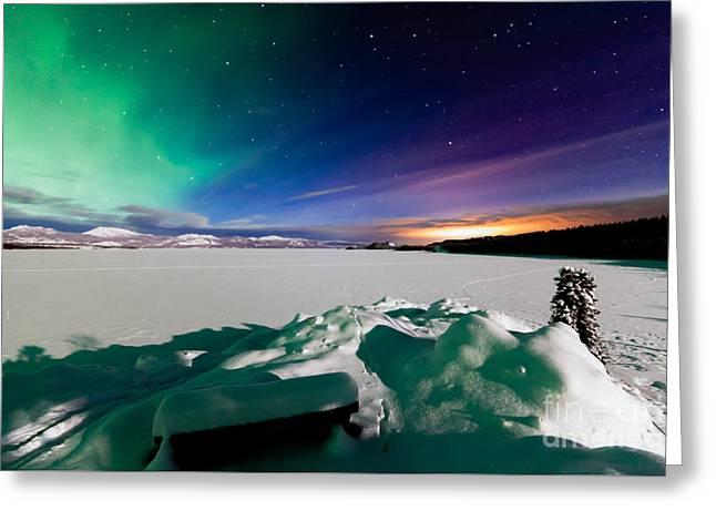 Snowy Night Greeting Cards - Aurora borealis Whitehorse light pollution Yukon Greeting Card by Stephan Pietzko