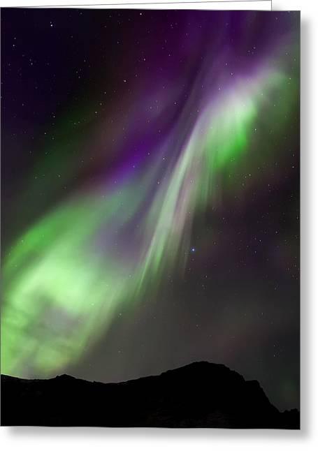 Night Sky Greeting Cards - Aurora  D Greeting Card by Martin Zalba