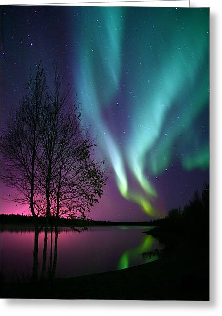 Northernlights Greeting Cards - Aurora Display Greeting Card by Ronald Lafleur