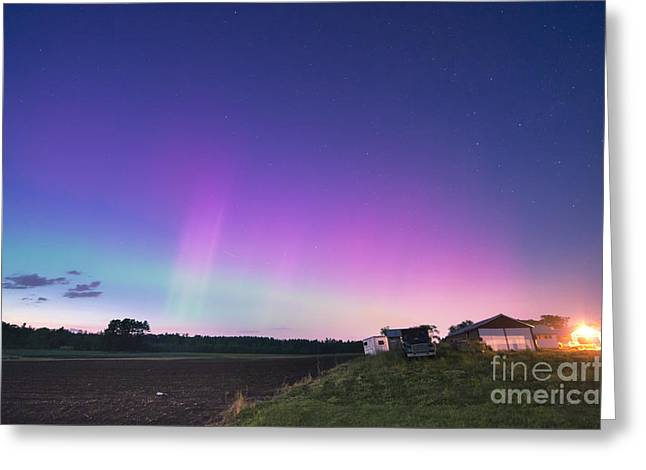 Maine Farms Greeting Cards - Aurora Energized Pepper Fields Greeting Card by Patrick Fennell