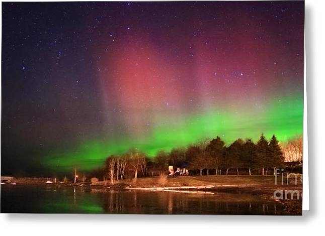 Aurora Lake Greeting Cards - Aurora in Night Sky Greeting Card by Charline Xia