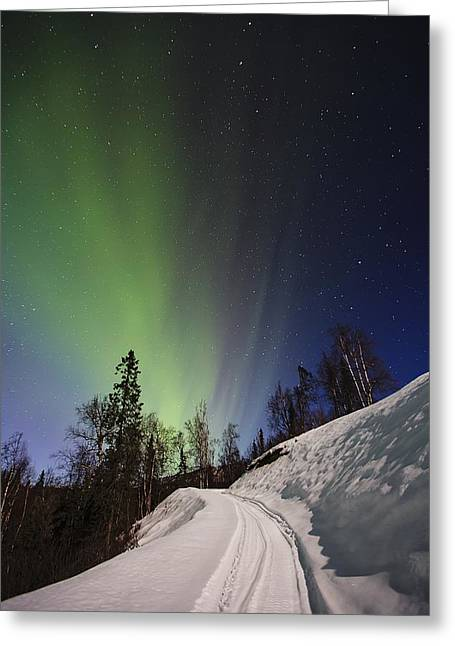 Winter Scene Photographs Greeting Cards - Aurora Rising Greeting Card by Ed Boudreau