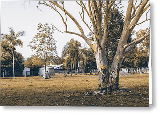 Dry Wood Greeting Cards - Australian rural countryside landscape Greeting Card by Ryan Jorgensen