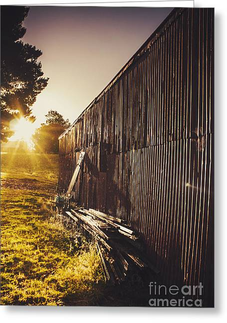 Barn Yard Greeting Cards - Australian rural farm shed in Waratah Tasmania Greeting Card by Ryan Jorgensen