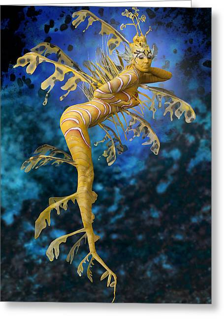 Leafy Sea Dragon Photographs Greeting Cards - Australian Sea Dragon Greeting Card by Filippo Ioco